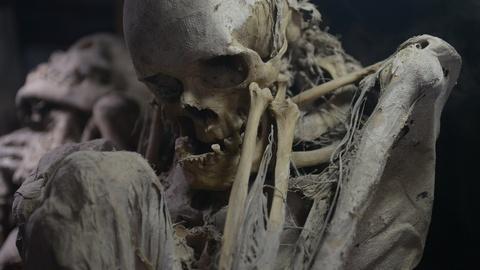 S13 E3: Carthage's Lost Warriors