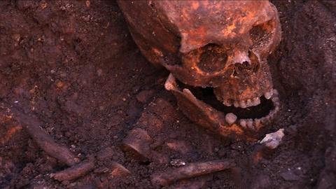 S13 E6: Resurrecting Richard III Preview