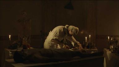 William Hewson's Experiments and the Craven Street Bones