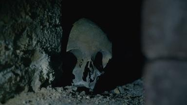 The Mystery Skull in The Crypt