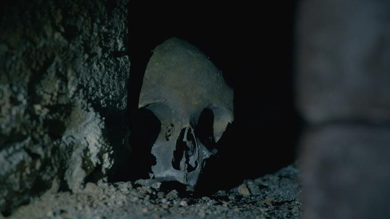 Shakespeare's Tomb: The Mystery Skull in The Crypt