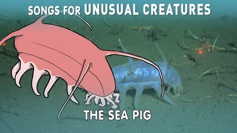 Songs for Unusual Creatures -- A Song for the Sea Pig with The Kronos Quartet