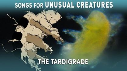 Songs for Unusual Creatures -- Hunting for Tardigrades!