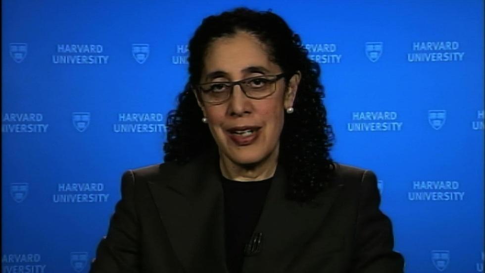Harvard law professor Lani Guinier image