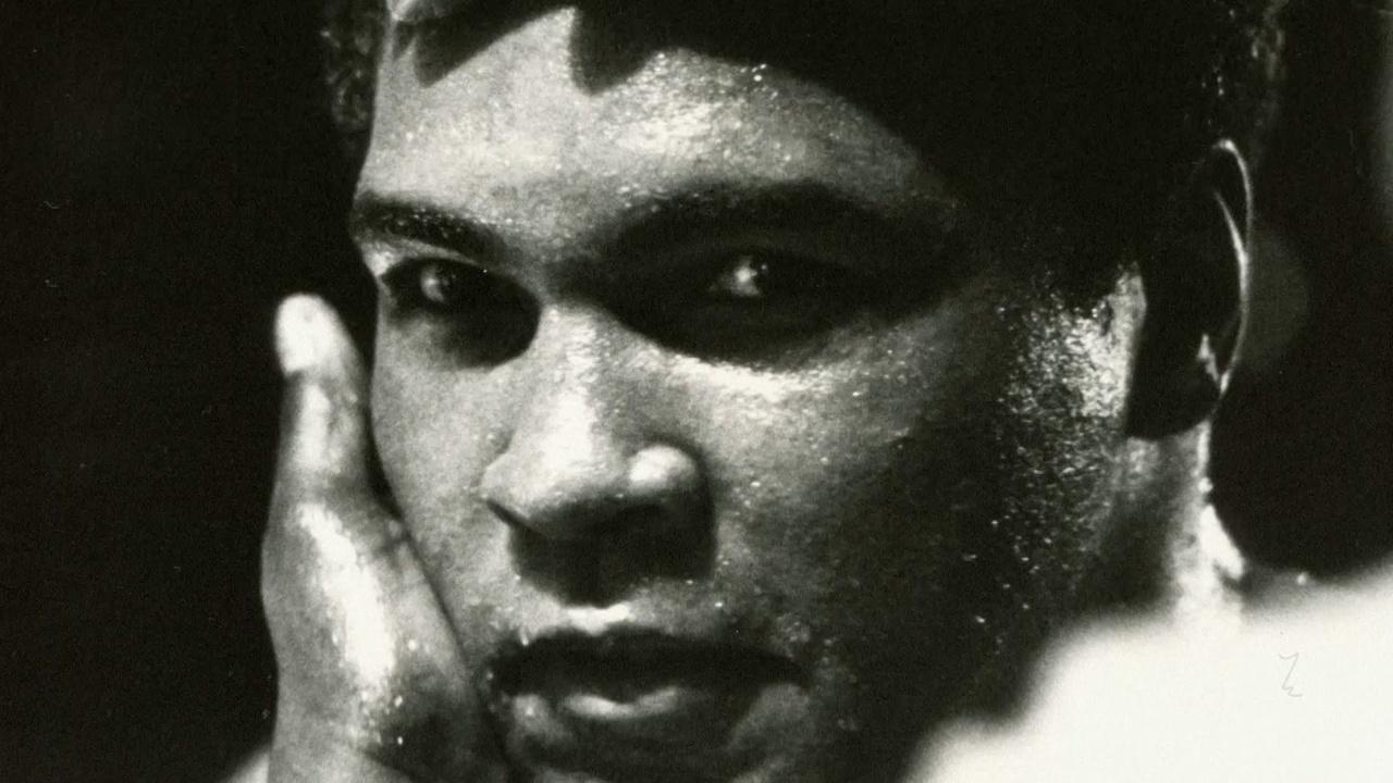 The Legendary Boxing Comeback Begins