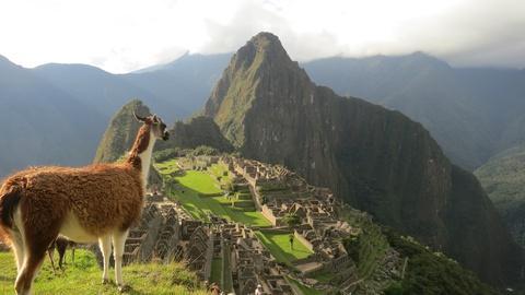 Time Scanners -- Machu Picchu
