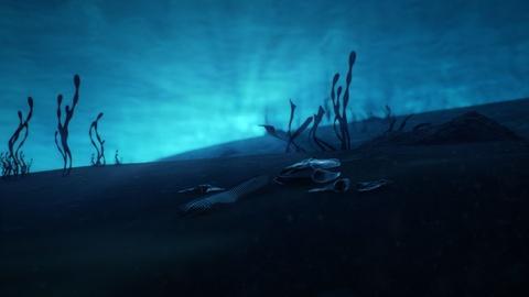 Your Inner Fish -- Amazing Places, Amazing Fossils: Tiktaalik