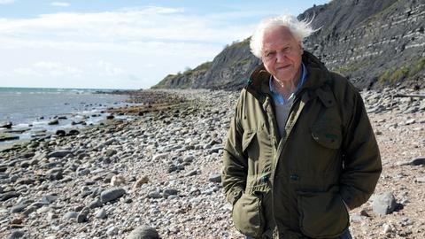 Nature -- Attenborough and the Sea Dragon