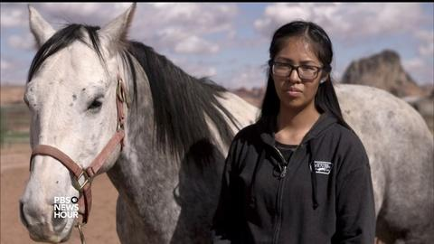 PBS NewsHour -- Hands-on veterinary program enriches Navajo students