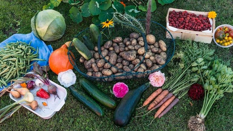 South Dakota Focus: Specialty Crops and Agritourism