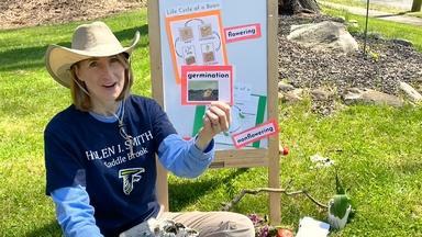 Bringing Life Cycles to Life - Jill Falk - Third Grade