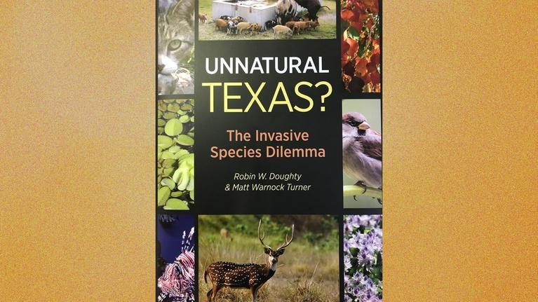 Central Texas Gardener: Invasive Species Dilemma