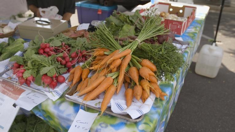 Modern Gardener: Farmers Market Ogden