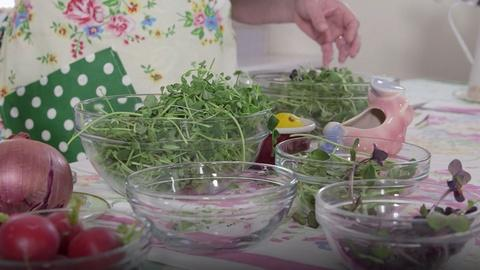 Around the Farm Table -- Maple Syrup and Microgreens
