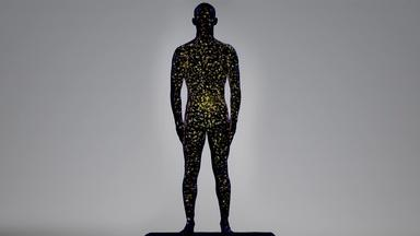 The Gut Microbiome is the Hub of Our Immune System