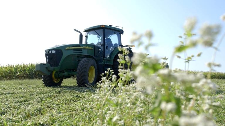 Show-Me Ag: Cover Crops
