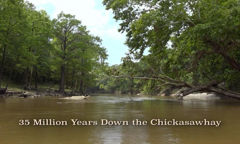 35 Million Years Down the Chickasawhay