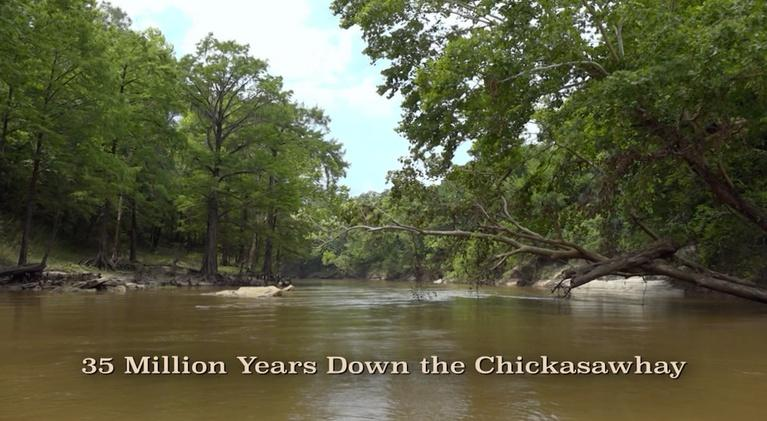 35 Million Years Down the Chickasawhay: 35 Million Years Down the Chickasawhay