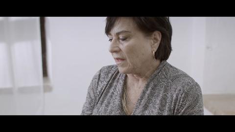 POV -- Lesson Plan Clip 4 | Advocate