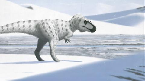 Eons -- When Dinosaurs Chilled in the Arctic