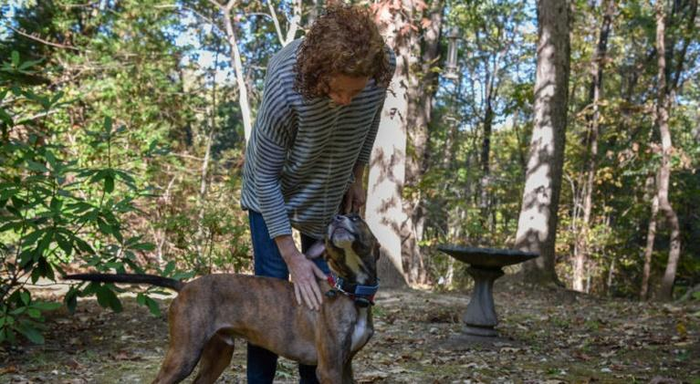 UNC Media Hub: Glimmers of Goodness in Puerto Rican Animal Welfare