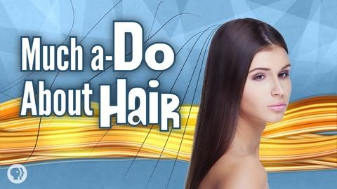 It's Okay to Be Smart -- S4 Ep31: Much A-Do About Hair