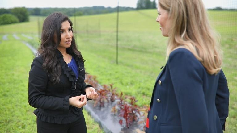 To Dine For with Kate Sullivan: Episode 109: Kavita Shukla