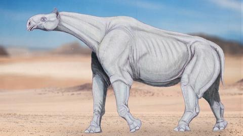 Eons -- The Rise and Fall of the Tallest Mammal to Walk the Earth