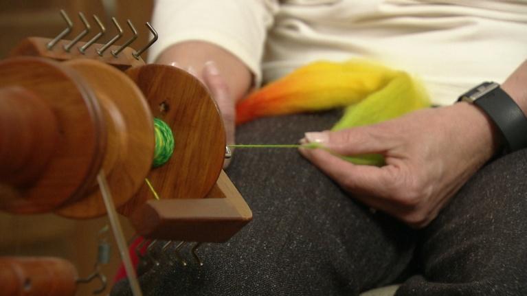 Kalamazoo Lively Arts: Weavers Guild of Kalamazoo: Terri Feldt