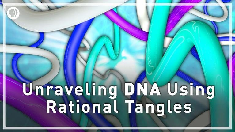 Infinite Series: Unraveling DNA with Rational Tangles