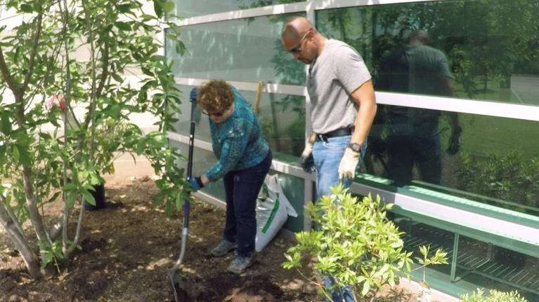 The Family Plot: Planting in Wet Soil Conditions