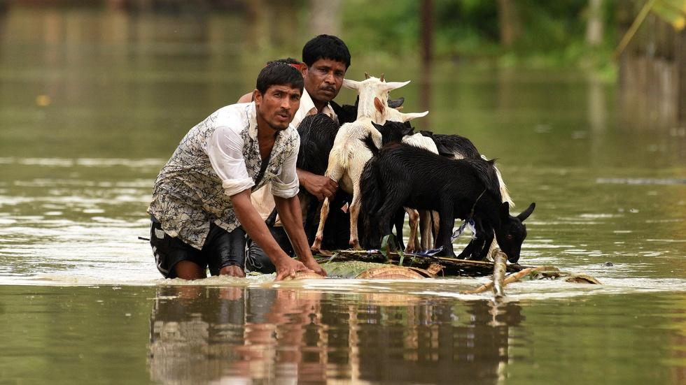 News Wrap: Monsoon death toll rises above 1,200 image