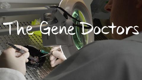 The Gene Doctors -- The Gene Doctors: Trailer