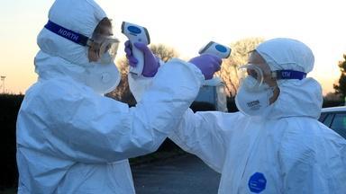 The Global Impact of Coronavirus
