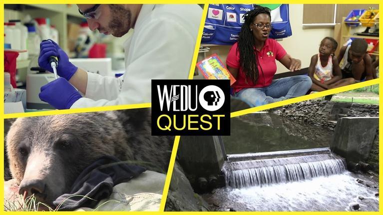 WEDU Quest: Episode 310