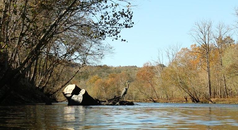 Discover the Upper Cumberland: Discover the Upper Cumberland 407