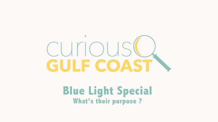 Curious Gulf Coast: Blue Light Special
