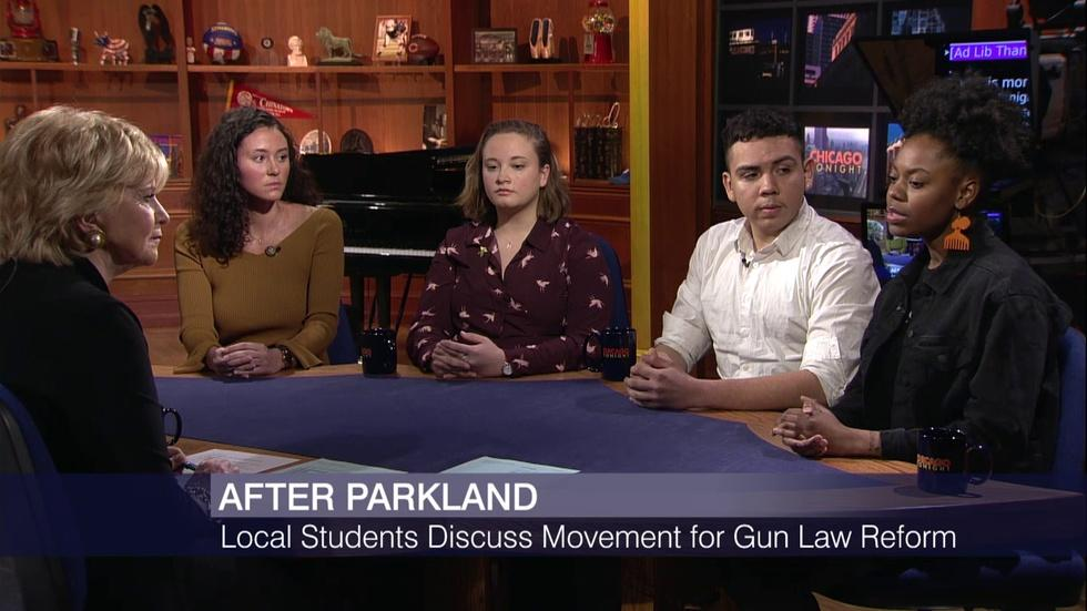 Local Students Discuss Movement for Gun Law Reform image