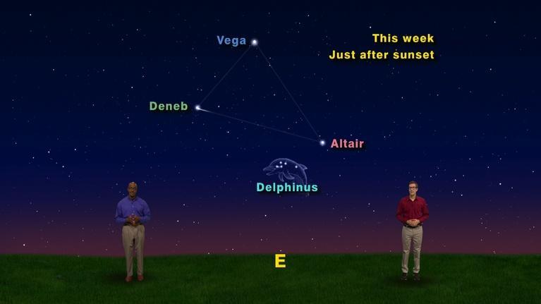 "Star Gazers: ""Delphinus the Dolphin"" August 20 - 26th 1 Min"