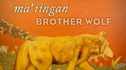 WPT Documentaries : Ma'iingan: Brother Wolf