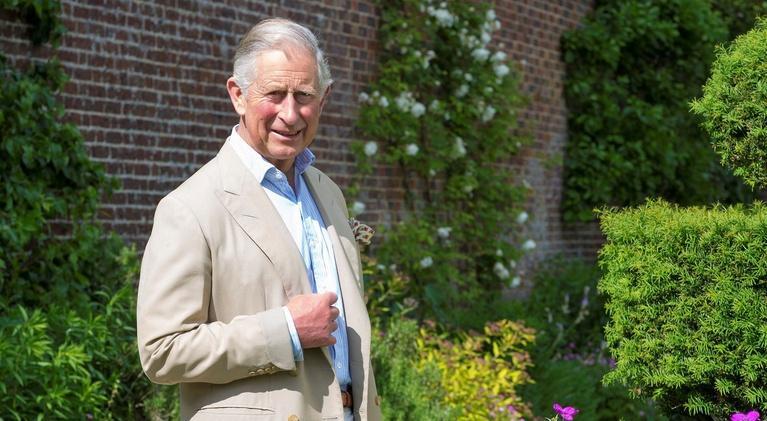 Prince Charles at 70: Prince Charles at 70