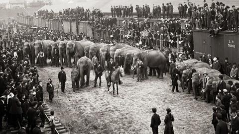 S30 E9: The Circus, Part 1