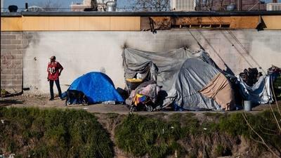 Pandemic reignites idea of universal basic income