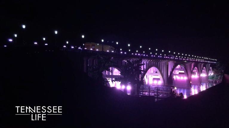 Tennessee Life: Tennessee Life - 512 - Tennessee Cityscapes