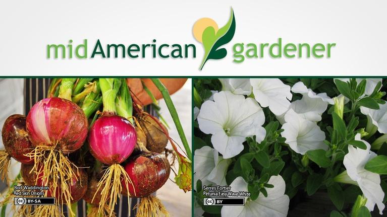 Mid-American Gardener: Mid-American Gardener with Jen Nelson, April 12, 2018