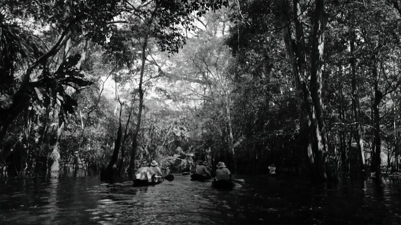 Season 30 Ep. 1: Into the Amazon logo