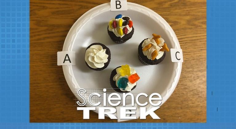 Science Trek: Inventions: Goldfish® or M&Ms ® ?