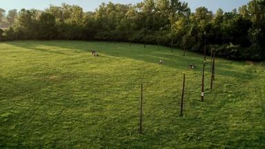 Cahokia's Celestial Calendar (Woodhenge)