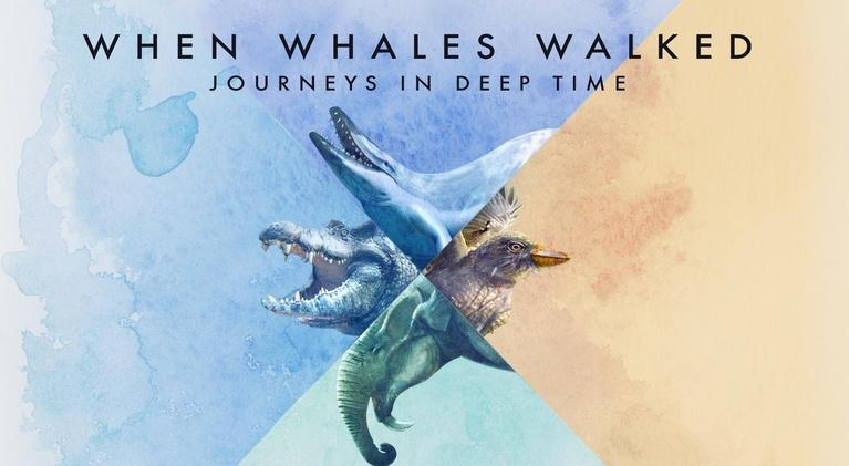 When Whales Walked: Journeys in Deep Time: When Whales Walked: Journeys in Deep Time