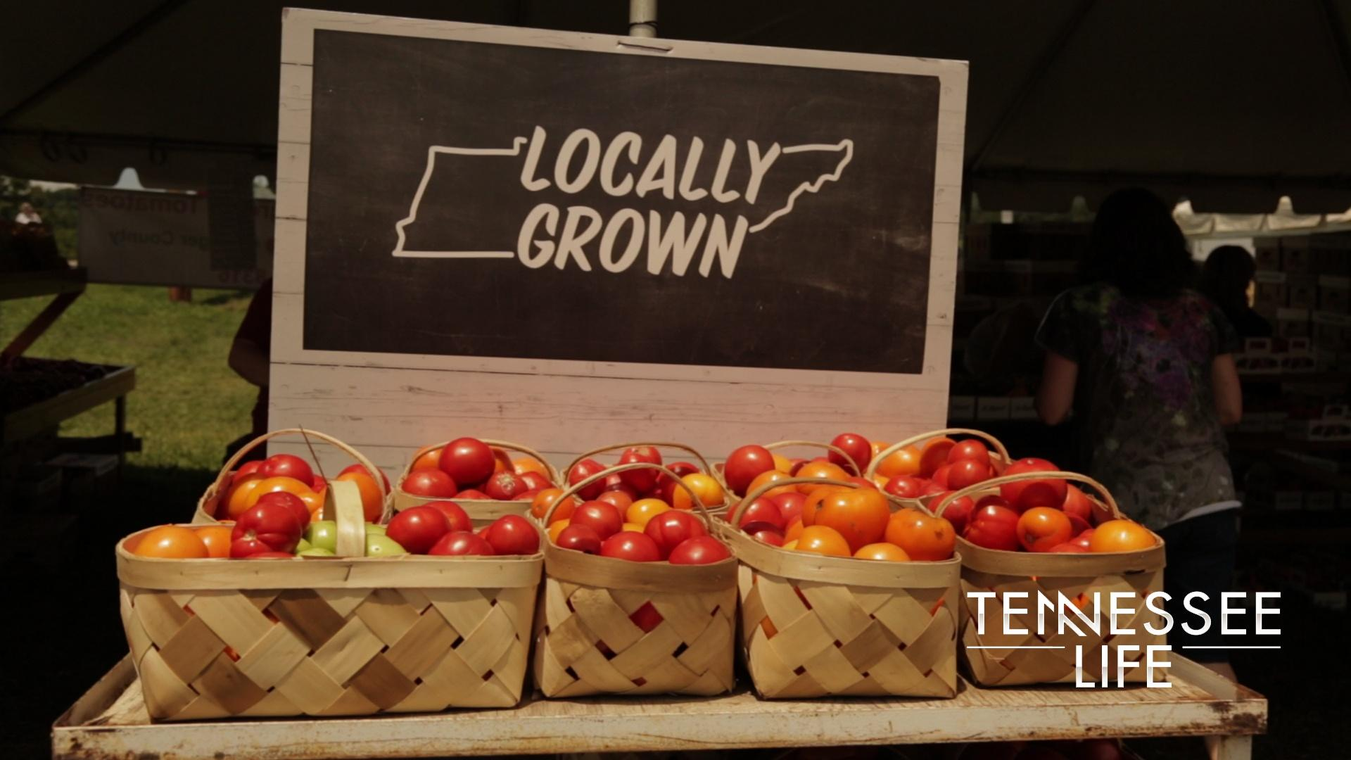 Tennessee Life - 603 - Tomatoes, Blueberries &